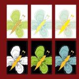 dekorativ whit för fjärilskort Fotografering för Bildbyråer