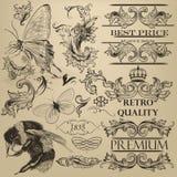 Dekorativa beståndsdelar för tappningvektor för design Royaltyfri Fotografi