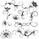 dekorativa blom- designelement Arkivbilder