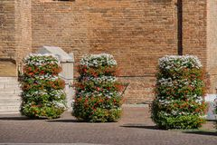 Dekorativa blom- kolonner på forntida basilikabakgrund Arkivfoton