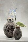 dekorativa blommavases Arkivfoto