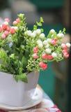 dekorativa blommor Arkivfoton
