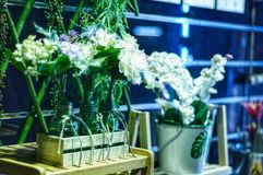 Dekorativa blommor i flaskor och hink royaltyfri bild