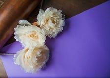 Dekorativa blommor på pastellpapper Royaltyfri Fotografi