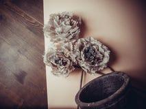 Dekorativa blommor på pastellpapper Royaltyfria Foton