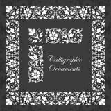 Dekorativa calligraphic prydnader, tränga någon, gränsar och ramar på en svart tavlabakgrund - för sidagarnering och design Arkivfoto