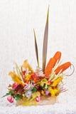 dekorativa exotiska prydnadväxter Arkivbild