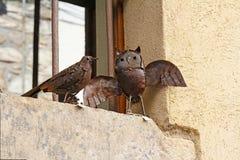 Dekorativa fåglar som göras av till salu metall på den gamla gatan i Besalu, Spanien Arkivfoton