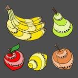 dekorativa frukter Royaltyfria Foton