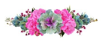 Dekorativa grönkålar och rosa pionblommor i en blom- linje ordning royaltyfri fotografi