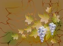 Dekorativa grupper av druvor och sidor på höstbakgrund i gula och orange skuggor Illustration för vektor EPS10 Royaltyfria Bilder