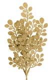 Dekorativa guld- leaves för jul Royaltyfri Bild