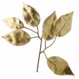 Dekorativa guld- leaves för jul Arkivbild