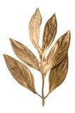 Dekorativa guld- leaves för jul Fotografering för Bildbyråer