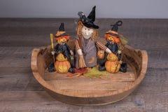 Dekorativa halloween häxor som förbereder sig för det läskiga partiet royaltyfri fotografi