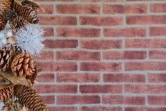Dekorativa julkottar Royaltyfri Foto