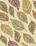 dekorativa leaves mönsan seamless tappning Arkivbild