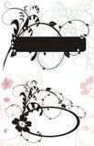 dekorativa ramar Royaltyfri Bild