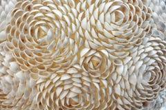 Dekorativa rosor av små havsskal, abstrakt plats Arkivfoton
