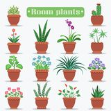 Dekorativa rumväxter i Clay Pots Illustrations Arkivbilder