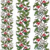 Dekorativa sömlösa gränser för jul Järnek och mistel förgrena sig med blad och bär Botanisk design för vinter Arkivfoton