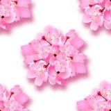 Dekorativa sakura blommor, bukett, designbeståndsdelar med skugga seamless Kan användas för kort, inbjudningar, affischer vektor illustrationer