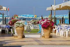 Dekorativa vaser med blommor på ingången som sätter på land zon arkivfoton