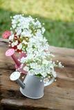 Dekorativa vita blommor i vas Royaltyfri Bild