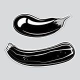 Dekorative Aubergine und Zucchini Stockfoto