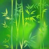 Dekorative Bambusniederlassungen - Innentapete stock abbildung