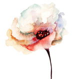 Dekorative Blume Lizenzfreie Stockbilder