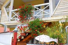 Dekorative Blumen und Fische Stockfotos