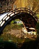 Dekorative Brücke Stockbild
