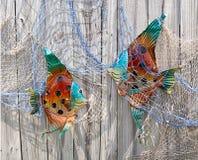Dekorative Fische im Netz auf Zaun Stockbilder