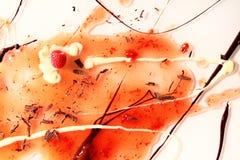 Dekorative Frucht und Schokolade spritzen mit Vanillesoße und -himbeere Lizenzfreies Stockbild