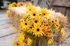 Dekorative gelbe Blumen nahe bei Heu lizenzfreie stockfotografie
