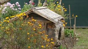Dekorative Häuser für das Halten des Geflügels stock video footage