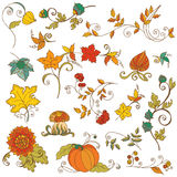 Dekorative Herbstzweige Lizenzfreies Stockfoto