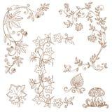 Dekorative Herbstzweige - für Einklebebuch Lizenzfreie Stockfotos