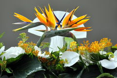 Dekorative Hochzeitsblumen Stockfoto