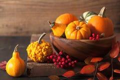 Dekorative Kürbise und Herbstlaub für Halloween Stockbilder