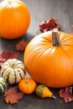 Dekorative Kürbise und Herbstlaub für Halloween Stockbild
