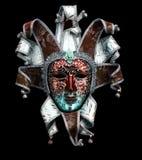 dekorative Karnevalsmaske auf Schwarzem Lizenzfreie Stockfotos