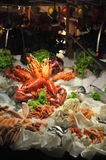 Dekorative Meeresfrüchte stockfoto
