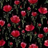 Dekorative Mohnblumenblumen Nahtloses Aquarellmuster auf weißem Hintergrund Lizenzfreie Stockfotografie