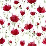 Dekorative Mohnblumenblumen Nahtloses Aquarellmuster auf weißem Hintergrund Lizenzfreie Stockfotos