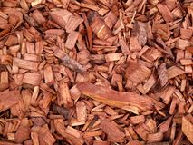Dekorative natürliche rote Holzspäne lizenzfreies stockfoto