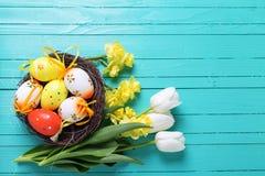 Dekorative Ostereier im Nest und helle Frühlingsblumen auf Aqua Stockfotos