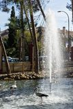 Dekorative Reiher auf dem Hintergrund des Brunnens stockbild