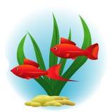 Dekorative rote Fische Lizenzfreie Stockfotografie